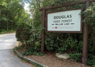 Douglas State Forest, Douglas, Massachusetts